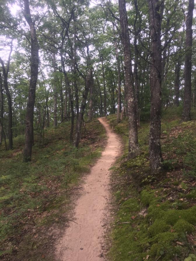 NCTR Uphill